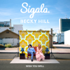 Sigala & Becky Hill - Wish You Well  artwork