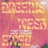 Joe Wong - Dreams Wash Away