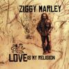 Ziggy Marley - Beach in Hawaii artwork
