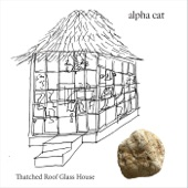 Alpha Cat - Thatched Roof Glass House