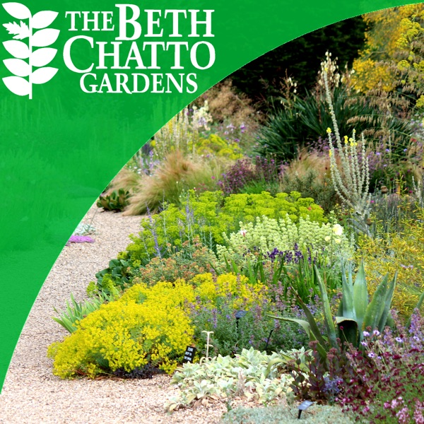 The Beth Chatto Gardens Podcast