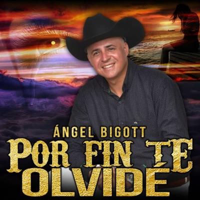 Por Fin Te olvidé - Single - Angel Bigott