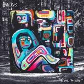 Walrus - Half Smoke