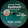 Soulmate (feat. Josh Milan) - Single