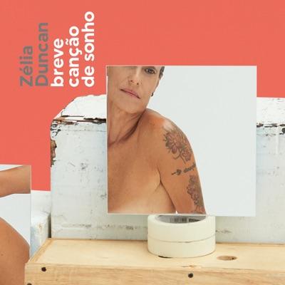 Breve Canção de Sonho - Single - Zélia Duncan