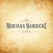 Montana Manouche - Stray Cat Strut (Live)
