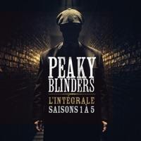 Télécharger Peaky Blinders, l'intégrale des saisons 1 à 5 (VF) Episode 28