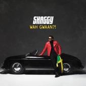 Shaggy - Supernatural (feat. Stacy Barthe & Shenseea)