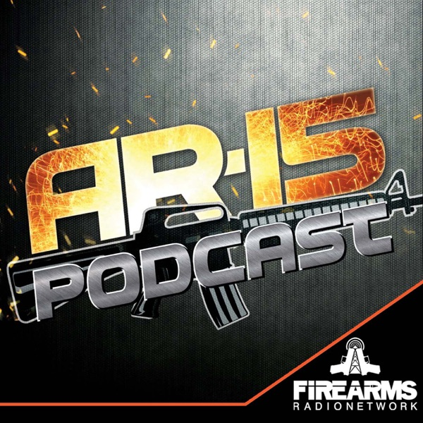 AR-15 Podcast- HK-416 Build