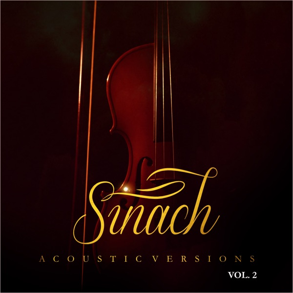 Acoustic Versions Vol. 2
