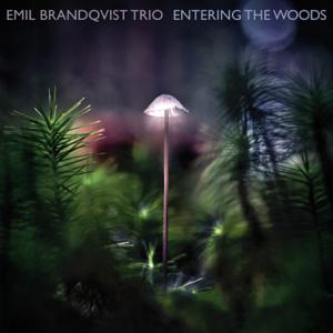 Emil Brandqvist Trio - Grand Piano