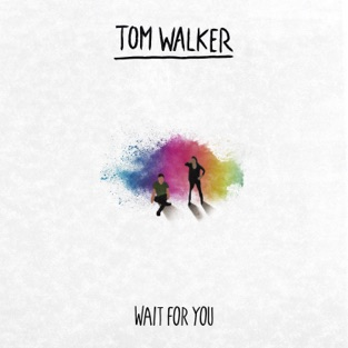 Tom Walker – Wait for You – Single [iTunes Plus AAC M4A]