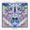 Astronaut Alchemists Remixes
