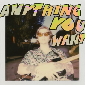Anything You Want - Single