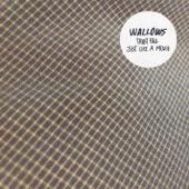 Wallows - Trust Fall