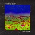 Soft Copy - Passion Flake