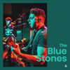 The Blue Stones - Rolling with the Punches (Audiotree Live Version) portada