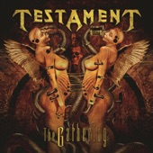 Testament - Careful What You Wish For