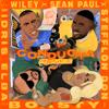 Wiley, Stefflon Don & Sean Paul - Boasty (feat. Idris Elba) [Conducta Remix] bild