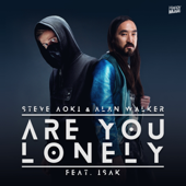 Are You Lonely (feat. ISÁK)