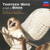 Paul Kelly & James Ledger - Thirteen Ways To Look At Birds (feat. Alice Keath & Seraphim Trio)