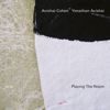 Avishai Cohen & Yonathan Avishai - Playing the Room  artwork