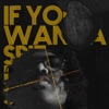 If You Wanna Spit I Can Spit - EP