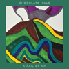 Chocolate Hills - A Pail of Air artwork
