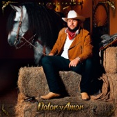 Dolor y Amor artwork