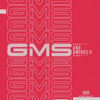 GMS - Gms and Amigos II artwork