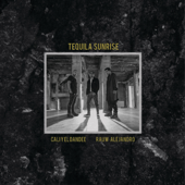 [Download] Tequila Sunrise MP3
