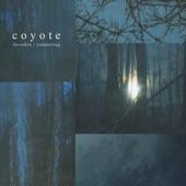 Coyote artwork