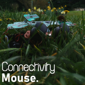 Mouse's Mistake - Connectivity