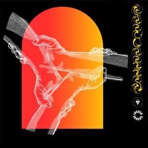 Enter Revolution - Single