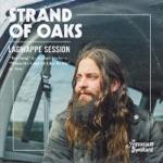 Strand of Oaks - Tea Song