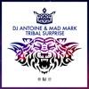 Tribal Surprise - Single, DJ Antoine & Mad Mark