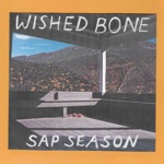 Wished Bone - Pink Room