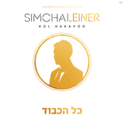 We Go On - Simcha Leiner - Simcha Leiner