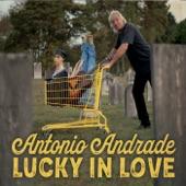 Antonio Andrade - Steve Forbert's Midsummer Night's Toast