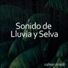 Prince Sereno - Selva Tropical Sonido, Pt. 13 portada
