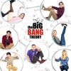 The Big Bang Theory: The Complete Series image