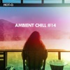 Ambient Chill, Vol. 14