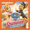 PAW Patrol, Summer Rescues - Synopsis and Reviews