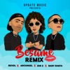 Bésame feat Baby Rasta Remix Single