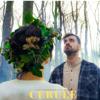 Liviu Teodorescu - Cerule (feat. Bruja) artwork