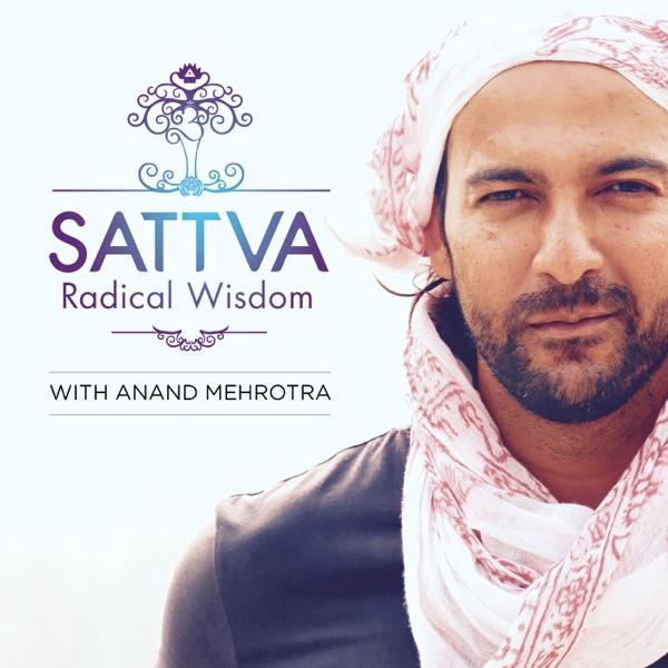 Sattva Radical Wisdom with Anand Mehrotra