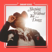 Sleeping Without You Is a Dragg (feat. Justin Vernon & Jenny Lewis) - Single