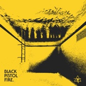 Black Pistol Fire - Well Wasted (Remix)