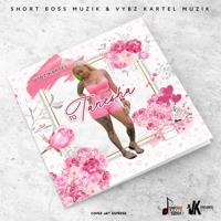 Lagu mp3 Vybz Kartel -  baru, download lagu terbaru