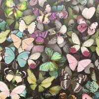 Бабочки (Vadim Adamov, Hardphol rmx) - ЕЛЕНА ТЕМНИКОВА